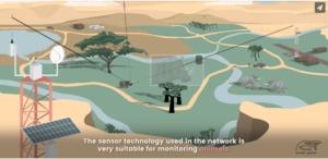 Smart Parks - Gráfico del parque nacional sensorizado